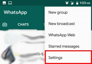 Download FMWhatsApp Latest Version (1)